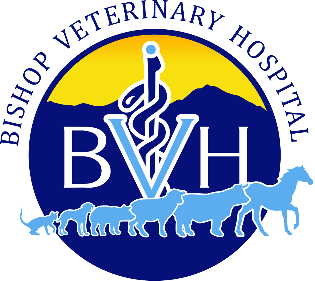 Bishop Veterinary Hospital